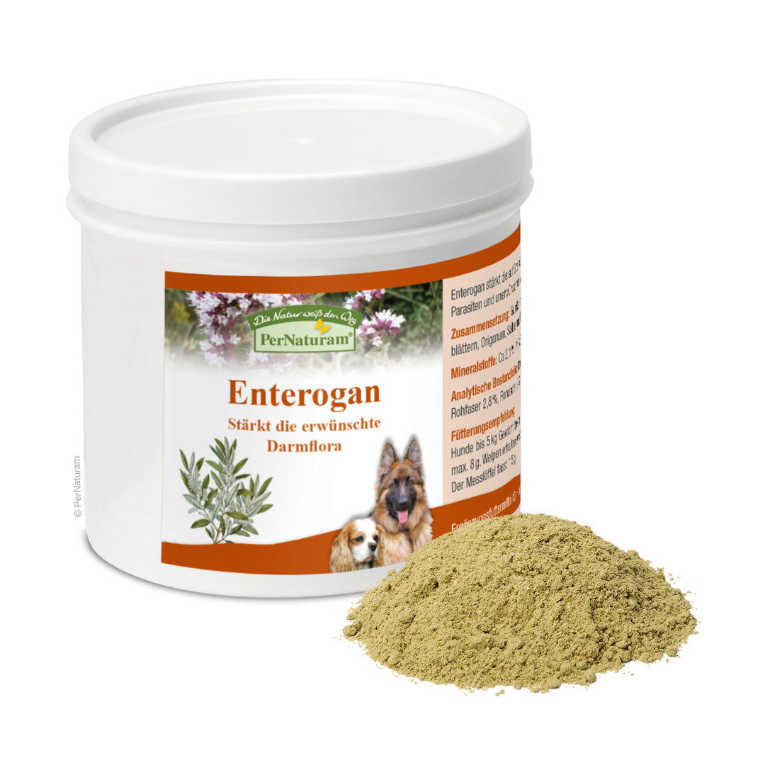 PerNaturam Enterogan 100g