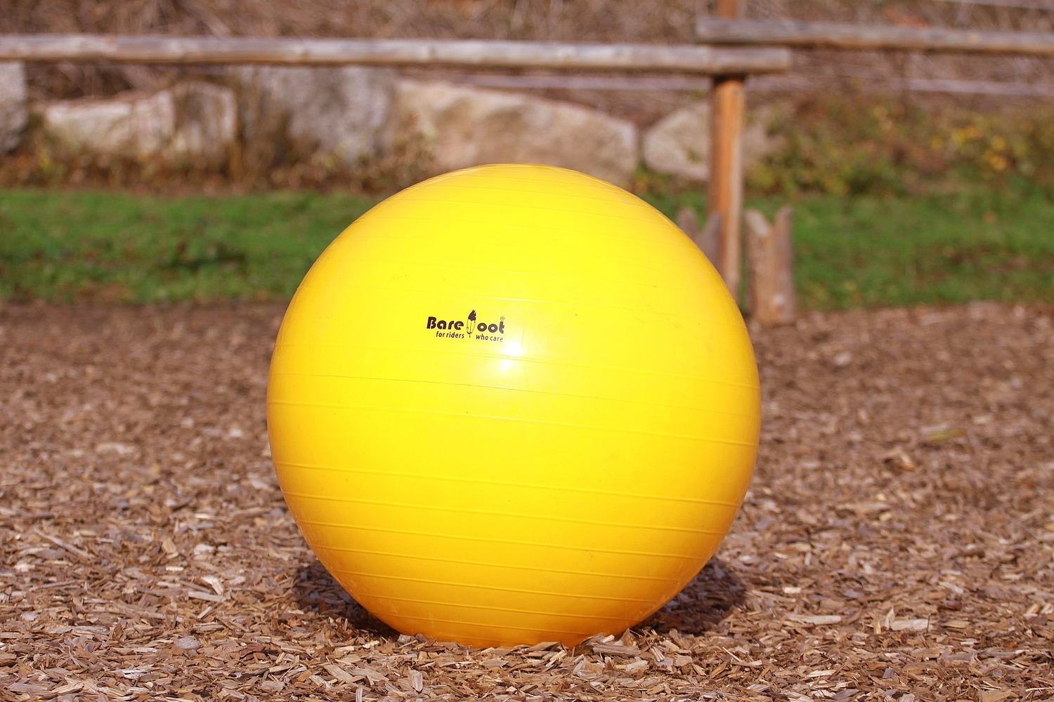 Barefoot Trainings-Ball 75 cm